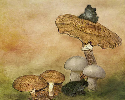 Digital Art - Mushroom Art by TnBackroadsPhotos