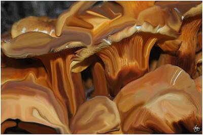 Photograph - Mushroom Mindscape by Wayne King