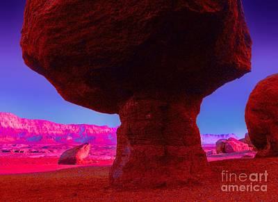 Digital Art - Mushroom Rock by Tim Richards