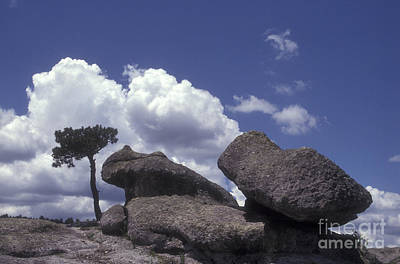 Photograph - Mushroom Rocks Copper Canyon Mexico by John  Mitchell
