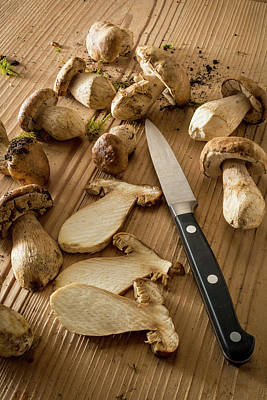 Cep Photograph - Mushrooms And Knife by Aberration Films Ltd