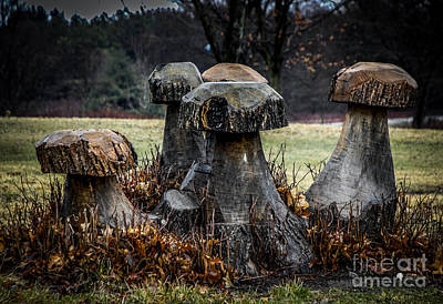 Photograph - Mushrooms Sculpture by Ronald Grogan