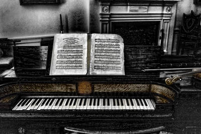 Photograph - Music From Ashes by Sharon Popek
