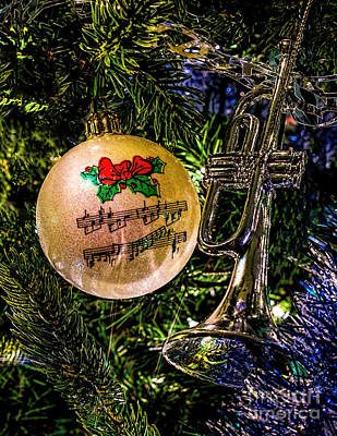 Photograph - Musical Christmas by Nick Zelinsky