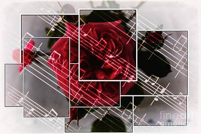 Floribunda Digital Art - Musical Rose Montage by Barbara Griffin