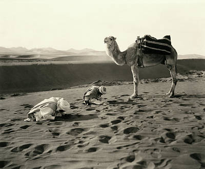Photograph - Muslim Desert Prayer by Underwood Archives