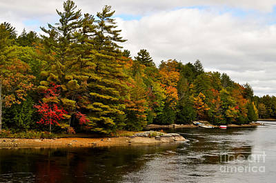 Photograph - Musquash River In Fall by Les Palenik