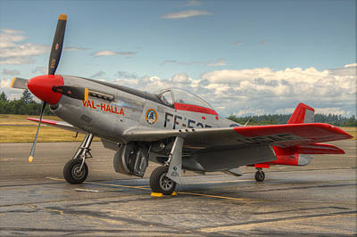 Photograph - Mustang 1 by Jeff Cook