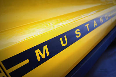 Side Panel Photograph - Mustang by Cricket Hackmann