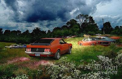 Grave Yard Photograph - Mustang Field by Tom Straub