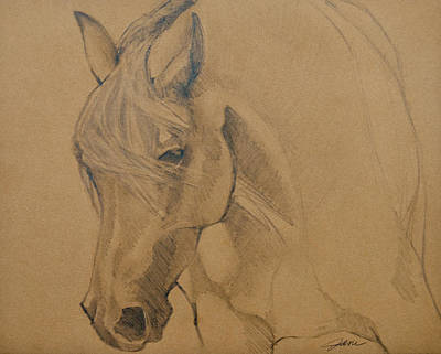 Drawing - Mustang Morning by Jani Freimann