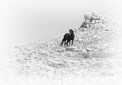 Mustang On Hill 2 Bw Art Print