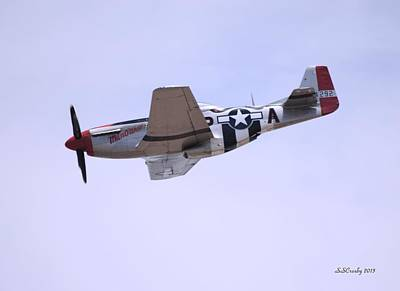 Photograph - Mustang P-51 Aircraft by Susan Stevens Crosby