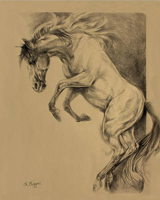 Wild Horses Drawing - Mustang Rearing by Derrick Higgins