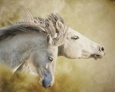 Mustang Run Art Print by Ron  McGinnis