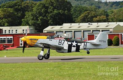 Photograph - Mustang Taking Off by David Fowler