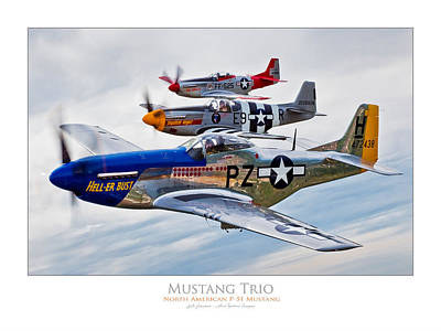 Photograph - Mustang Trio by Lyle Jansma