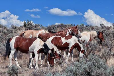 Red Dun Horse Digital Art - Mustangs On South Steens by Kathleen Bishop