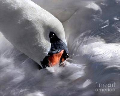 Digital Art - Mute Swan by Dale   Ford