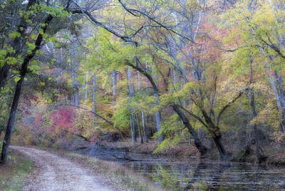 Muted Fall Colors On Maryland Canal Art Print