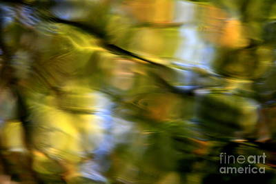 Photograph - Muted Fall Reflections  by Neal Eslinger