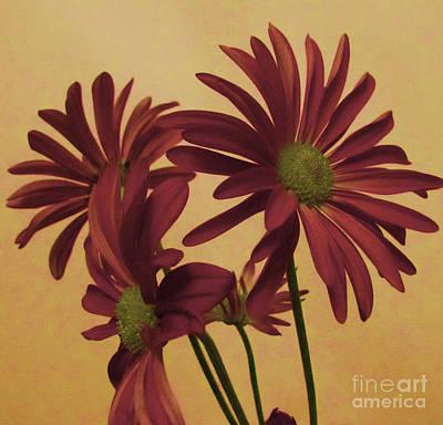 Burnt Digital Art - Muted Tone Soft Flower Bouquet by Adri Turner