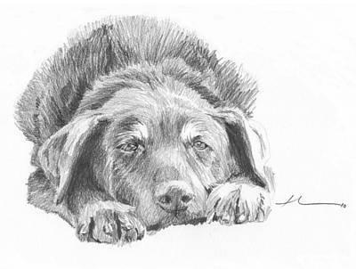 Drawing - Mutt Pencil Portrait by Mike Theuer