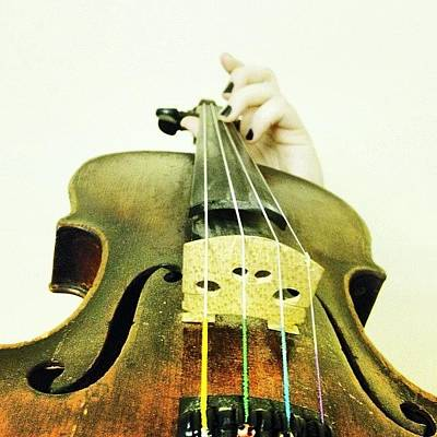 Violin Photograph - My 200 Year Old #violin Does Not by Claire Alexander