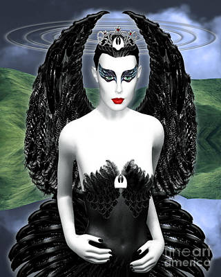 My Black Swan Art Print by Keith Dillon