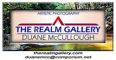 Photograph - My Business Card by Duane McCullough
