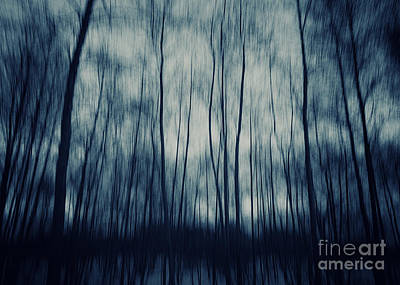 Purple Rain Photograph - My Dark Forest by Stelios Kleanthous
