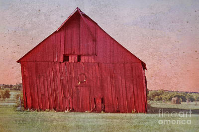 My Textures Photograph - My Days Are Done by Betty LaRue