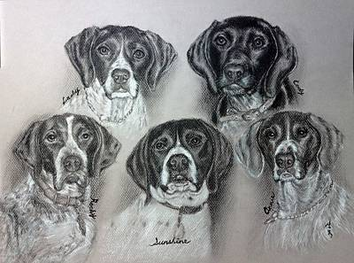 Custom Pet Portrait Drawing - My Dogs In My Life Time by Sun Sohovich