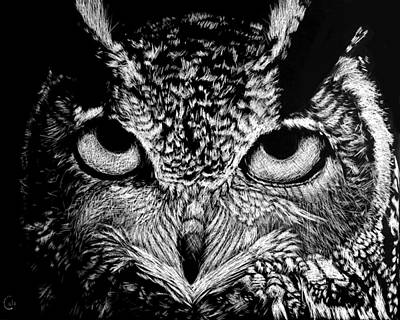 Animals Drawings - My Eyes Have Seen You by Nathan Cole