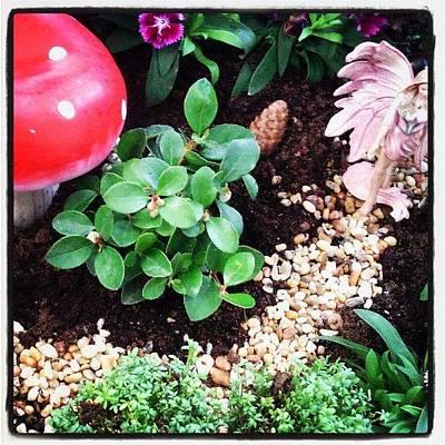 Fairy Photograph - My Fairy Garden. #fairy #garden by Emily Roberts