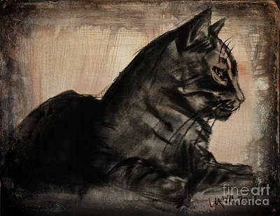 Drawing - My Favorite Feral by Michelle Wolff
