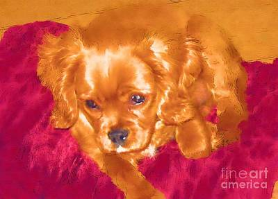 Delivering Mixed Media - My Friend Copper The King Charles Spaniel Puppy by Jonathan Steward