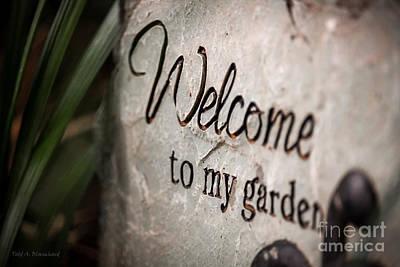 Photograph - My Garden by Todd Blanchard