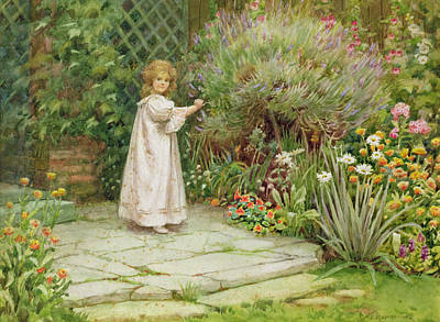 My Garden Art Print by William Ashburner