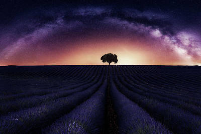 Milky Way Wall Art - Photograph - My Lavander by Jorge Ruiz Dueso