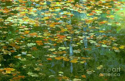 Photograph - My Monet by Benanne Stiens