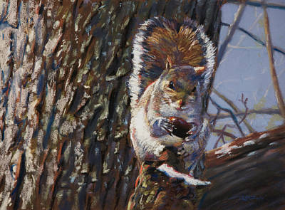 Squirrel Wall Art - Pastel - My Nut by Christopher Reid