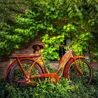 Photograph - My Old Bicycle by Debra and Dave Vanderlaan