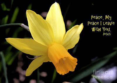 My Peace I Leave  Original