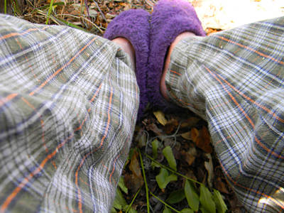 Photograph - My Purple Slippers by Christy Usilton