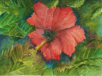 My Quiet Place-hibuscus Flower Original by David Patrick