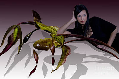 My Shadow Original by Angelika Drake