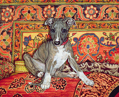 Cushions Photograph - My Whippet Baby by Ditz
