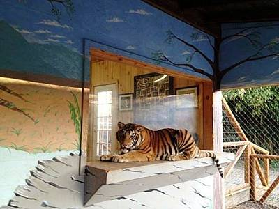 Painting - My Zoo Mural by Stacy C Bottoms