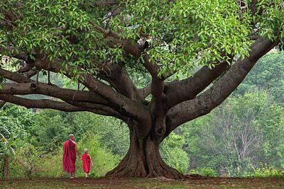 Banyan Photograph - Myanmar, Pindaya by Jaynes Gallery